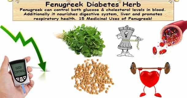 Fenugreek For Diabetes Dosage