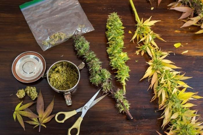 Marijuana and diabetes: Benefits, disadvantages, and legality