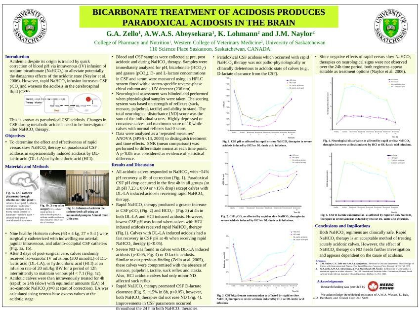 Bicarbonate Treatment Of Acidosis Produces Paradoxical Acidosis In The Brain