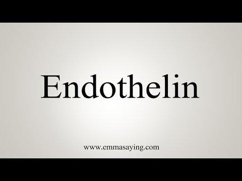 Diabetic Retinopathy And Endothelin System: Microangiopathy Versus Endothelial Dysfunction