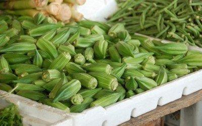Okra Soaked In Water Good For Diabetes
