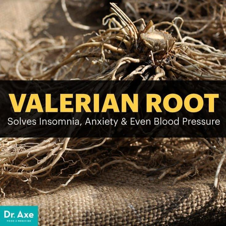 Valerian Root Diabetes