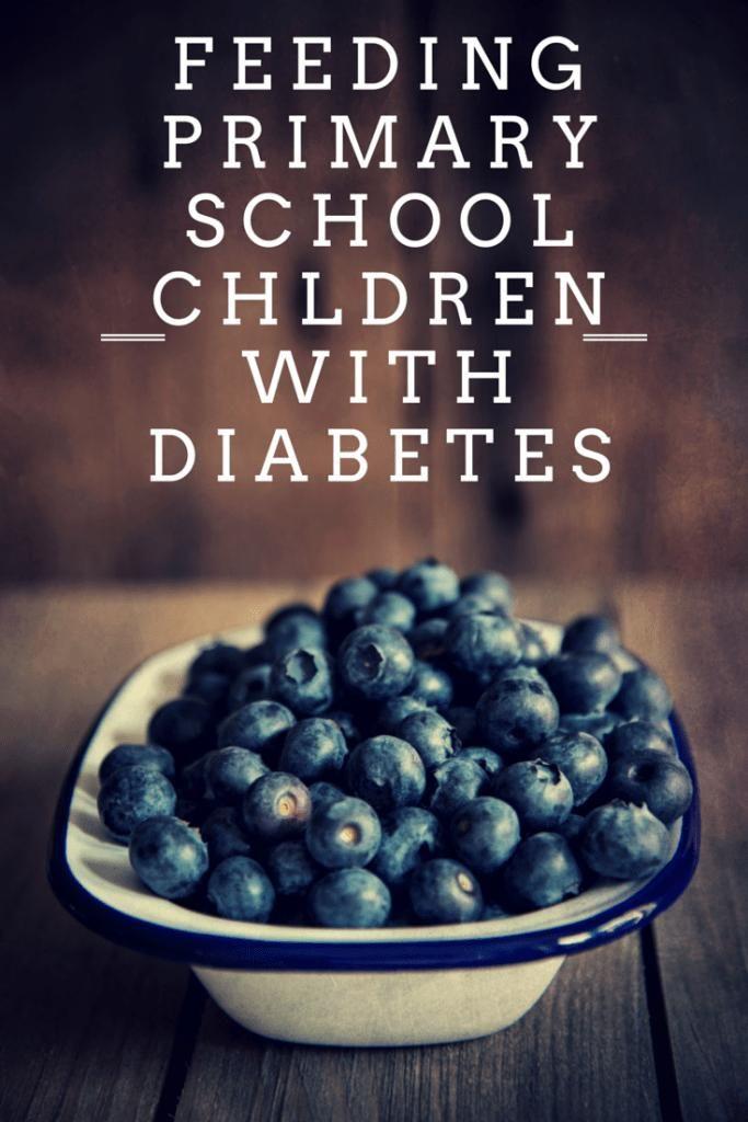 School Lunch Ideas For Diabetics