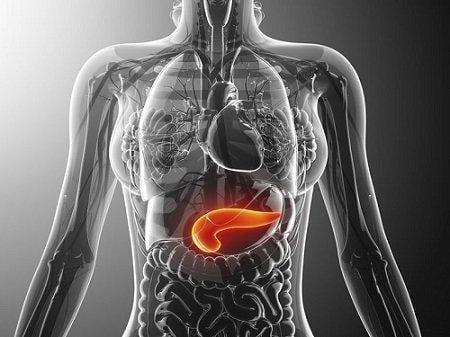 Januvia And Pancreatitis: What You Should Know