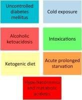 Original Communication Postmortem Biochemistry In Suspected Starvation-induced Ketoacidosis
