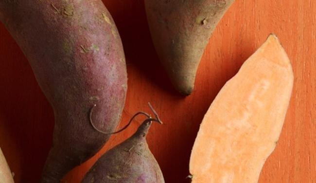 Why The Sweet Potato Is King