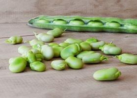 Are Lima Beans Good For Diabetics