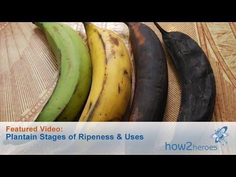 Influence Of Ripeness Of Banana On The Blood Glucose And Insulin Response In Type 2 Diabetic Subjects.
