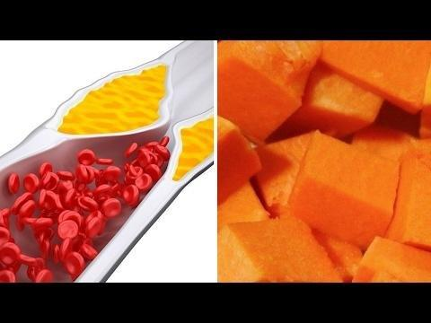 Can Triglycerides Be Converted To Glucose?