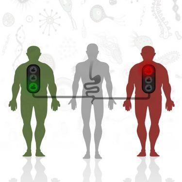 What Is Insulin Sensitivity