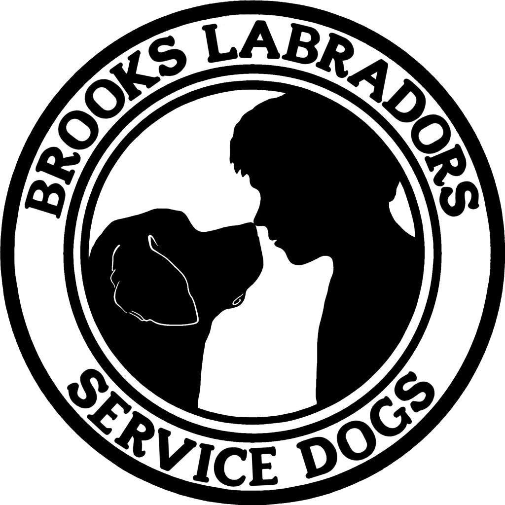 *note: We Are No Longer Taking New Service Dog Clients. We Are Not Accepting New Applications. Here's Why. *