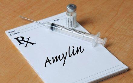 Amylin Diet