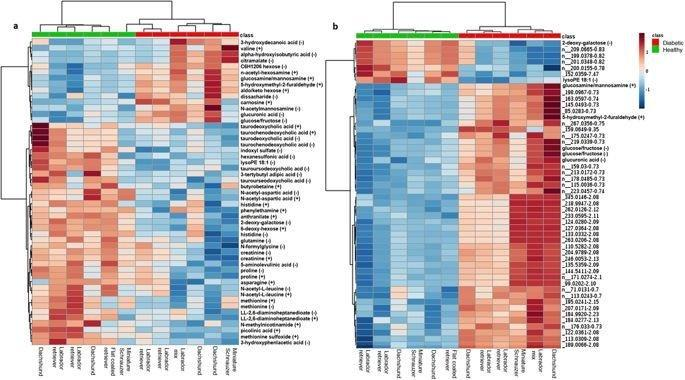 Untargeted metabolomic analysis in naturally occurring canine diabetes mellitus identifies similarities to human Type 1 Diabetes