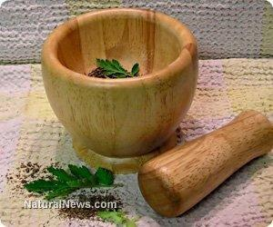 Chinese Herb That Cures Diabetes