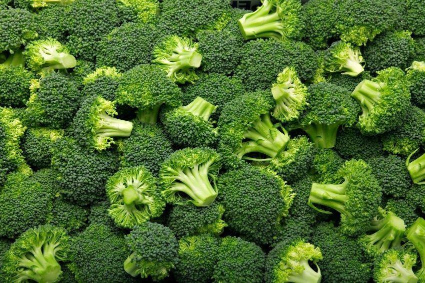 Broccoli Extract And Diabetes
