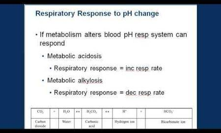 How Does Ketoacidosis Affect Blood Ph
