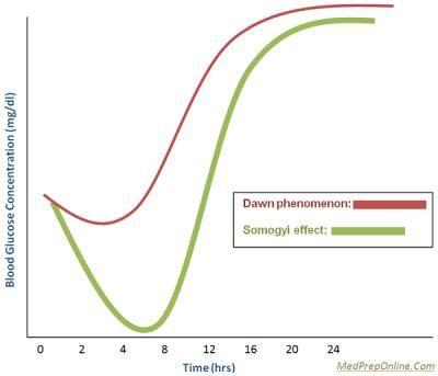Do Non Diabetics Have Dawn Phenomenon?