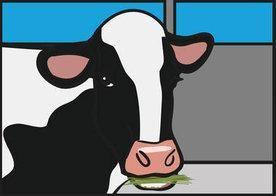 What Are The Symptoms Of Acidosis In Cattle?