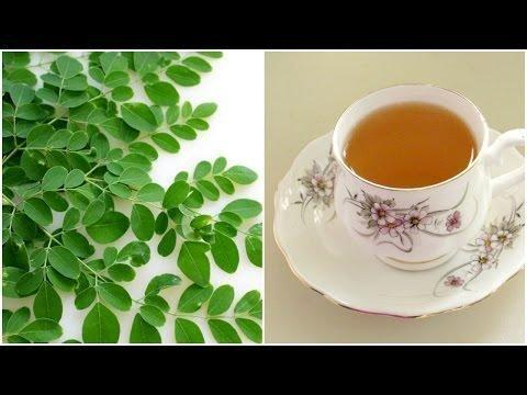 Moringa The Natural Cure For Diabetes