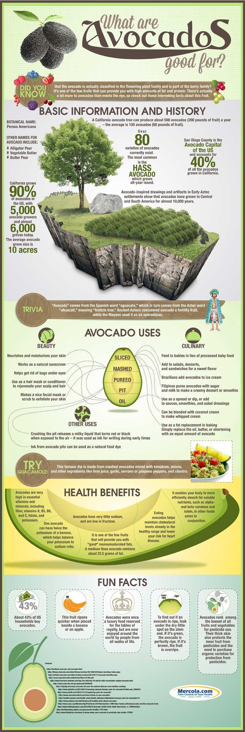 Avocado And Diabetes