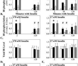 Insulin Desensitization Protocol