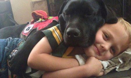 Jedi the Dog Helps His Little 'Master' Luke Battle Type 1 Diabetes