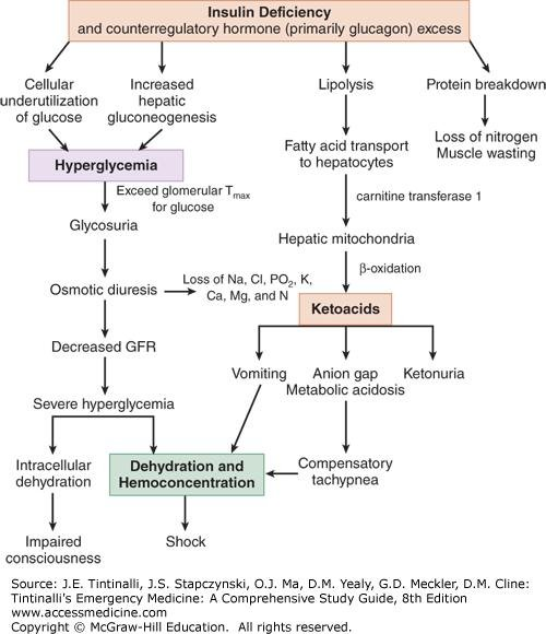 Why Is There Hyperkalemia In Diabetic Ketoacidosis?