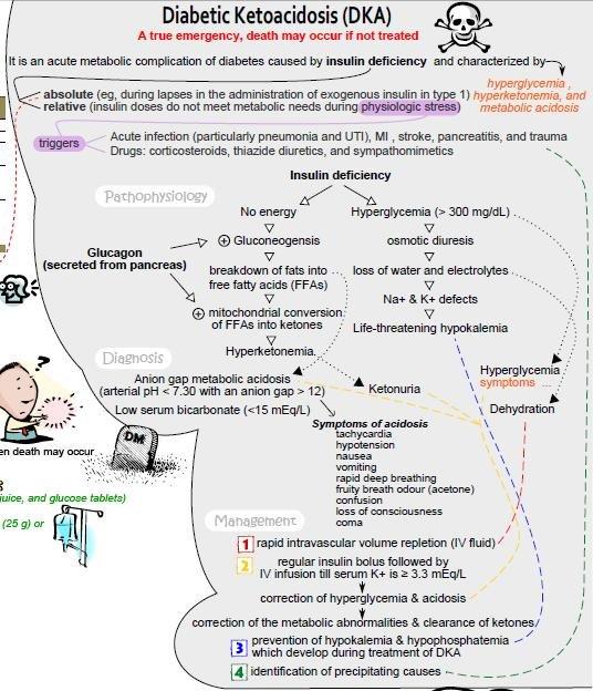 Description Diabetic Ketoacidosis Concept Map.png