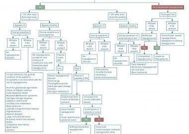 Insulin Resistance Low Blood Sugar Symptoms