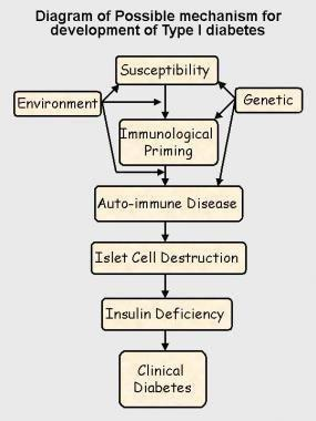 Pediatric Type 1 Diabetes Mellitus