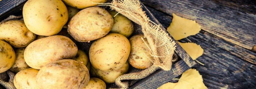Potatoes, Gestational Diabetes And Your Pregnancy