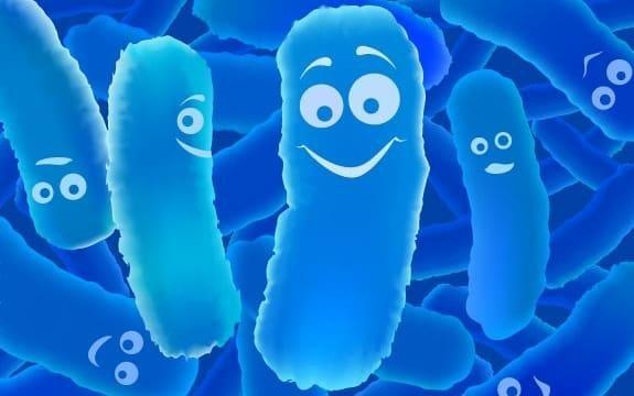 Does Probiotics Help People with Diabetes?