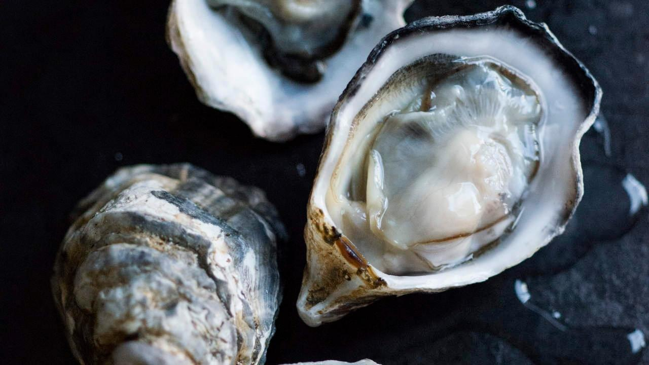 Can Diabetics Eat Oysters