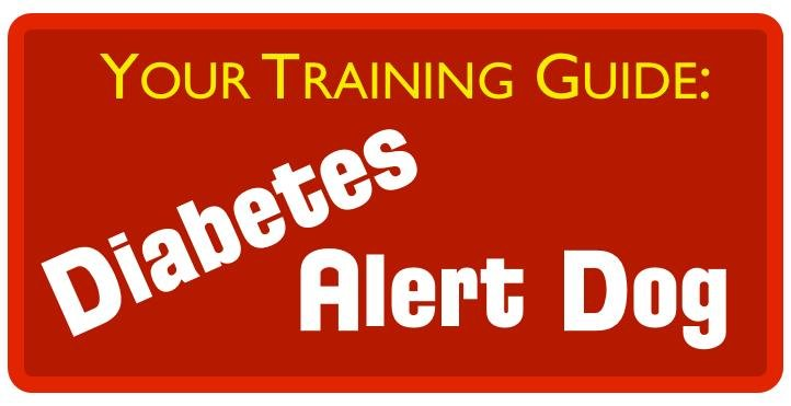 Guide: Training A Diabetes Alert Dog