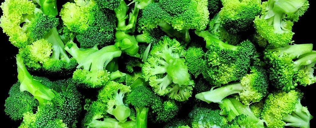 Broccoli Could Be a Secret Weapon Against Diabetes, Say Scientists