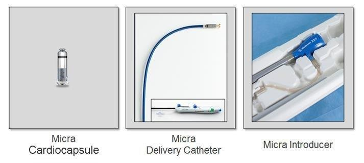 Micra Introducer