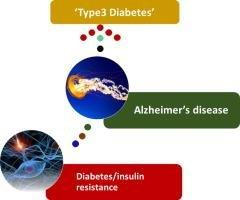 Review Is Alzheimer's Disease A Type 3 Diabetes? A Critical Appraisal☆