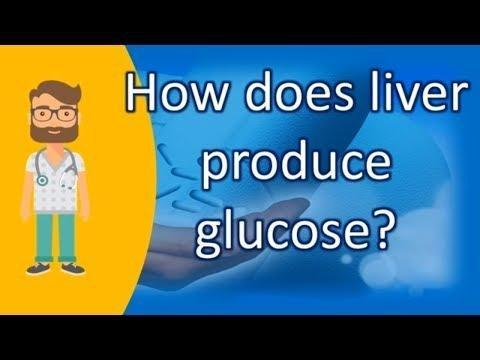 Why Can T Fatty Acids Produce Glucose When Blood Glucose Gets Very Low