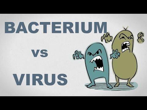 Is Diabetes A Virus Or Bacteria