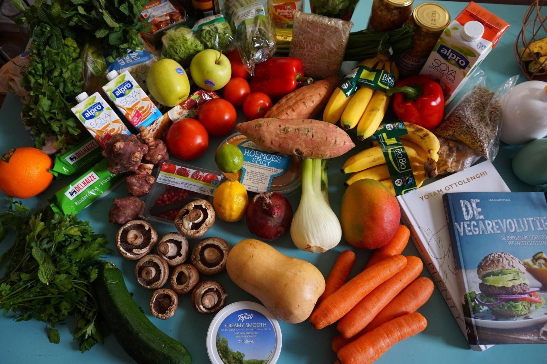 Vegan Diet Diabetes Study