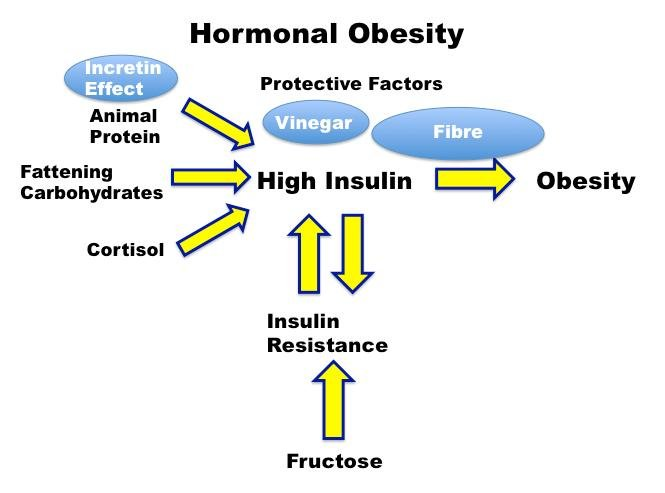 Does Insulin Lose Effectiveness Over Time