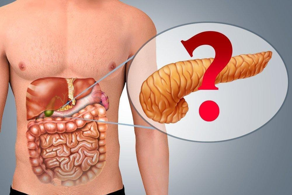 How Long Can You Live Without A Pancreas