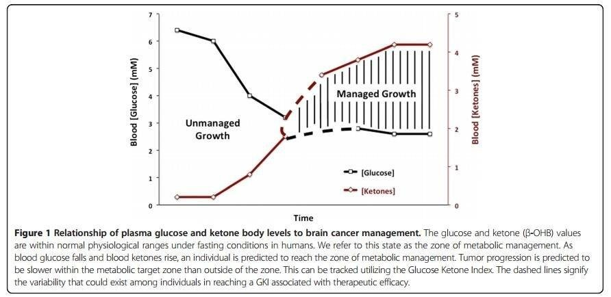 The Glucose-ketone Index Approach To Cancer Therapy Some Early Insights
