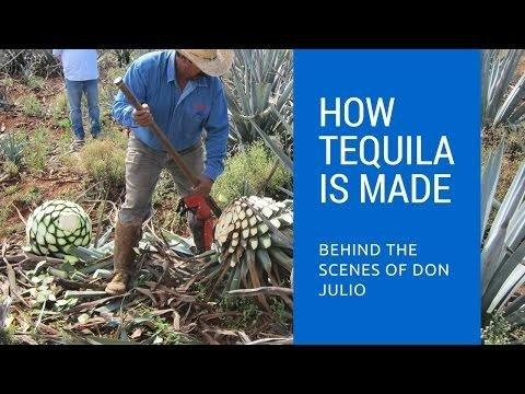 Can Tequila Treat Diabetes?