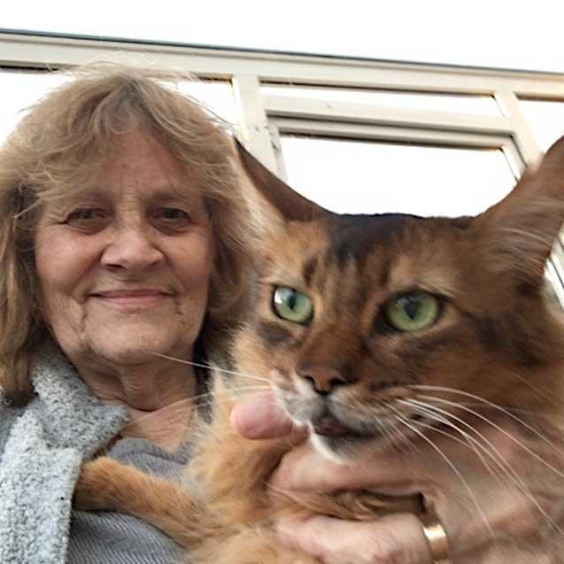 The Complications Of Having A Cat With Diabetes – By Rosalind Anderson