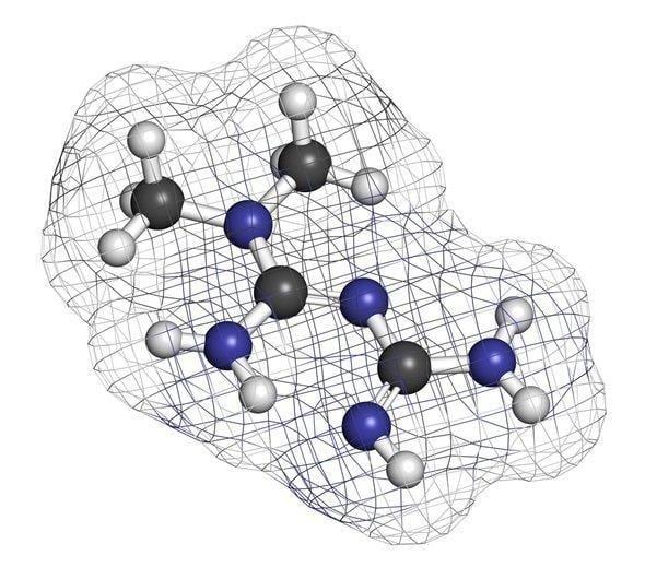 Metformin And Fdg-positron Emission Tomography