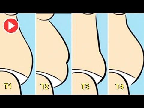 Blasted Belly Fat: Types Of Fat