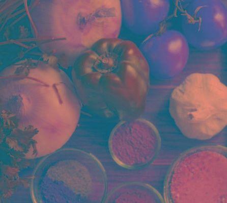 Foods To Repair Pancreas