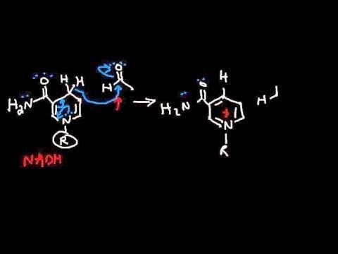 Alcohol Lactic Acidosis Mechanism