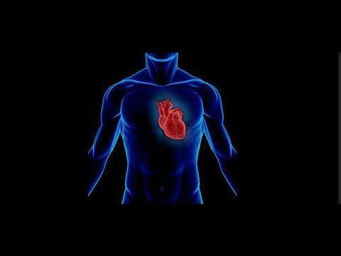 Type 2 Diabetes And Heart Disease